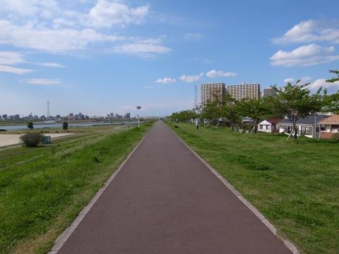 江戸川自転車道路.jpg